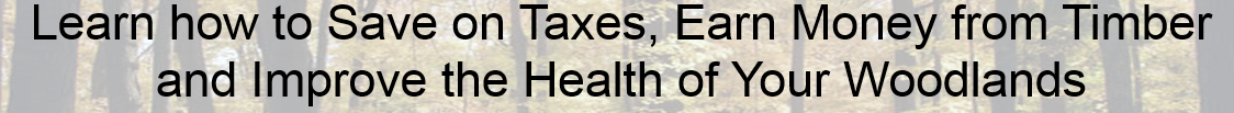 """Banner title """"Learn how to Save on Taxes, Earn Money from Timber and Improve the Health of Your Woodlands"""""""