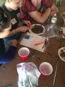 Educators investigate soil for PLT Activity #70, Soil Stories, in the K-8 guide