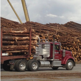 truck carrying load of timber driving through timber yard