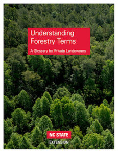 Cover photo for Hot Off the Press! Updated Publication Covering More Than 150 Forest Terms