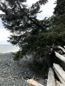with a Sitka spruce tree at Sandcut Beach, on Vancouver Island near Victoria, British Columbia in August 2020