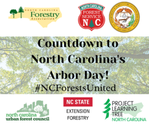 Cover photo for NC Arbor Day - March 19, 2021