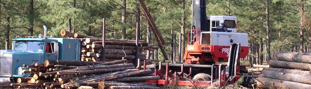 Loader loading logs onto log truck